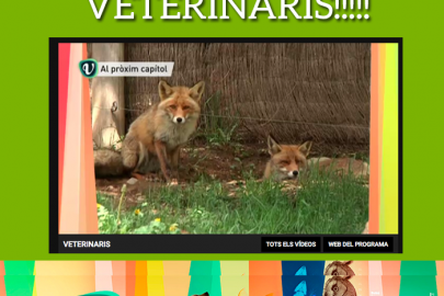 veterinaris de tv3