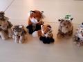 animals-mollo-parc2