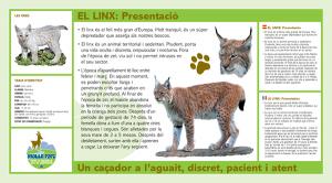 LINX--mollo-parc