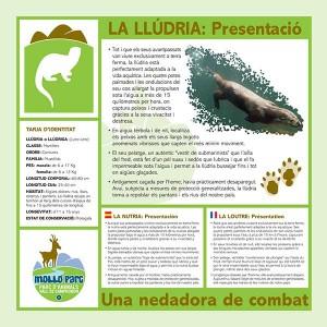 LLUDRIA_Mollo-parc
