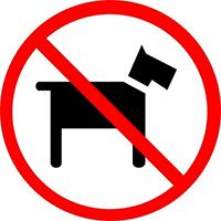 no-gossos
