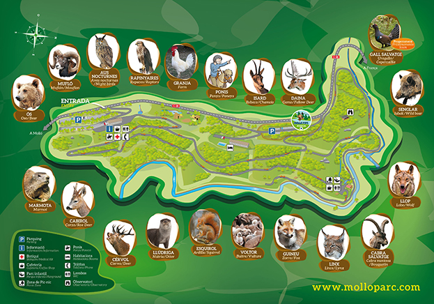 Interactive map dels animals del Molló Parc